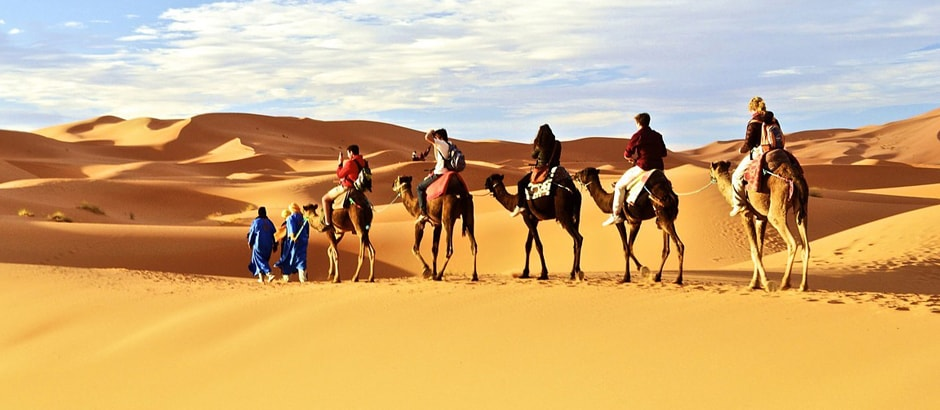 Luxury desert tours